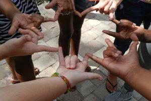 Petit survol – Langues des signes